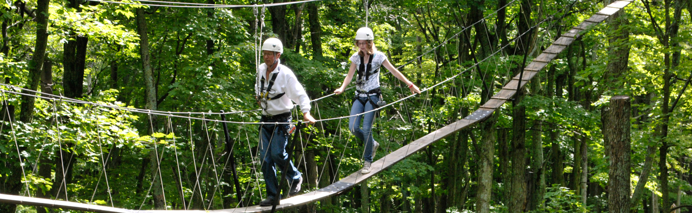Things to Do - Canopy Tours