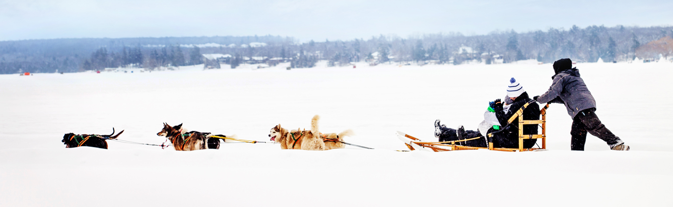Things to Do - Dog Sled & Sleigh Rides