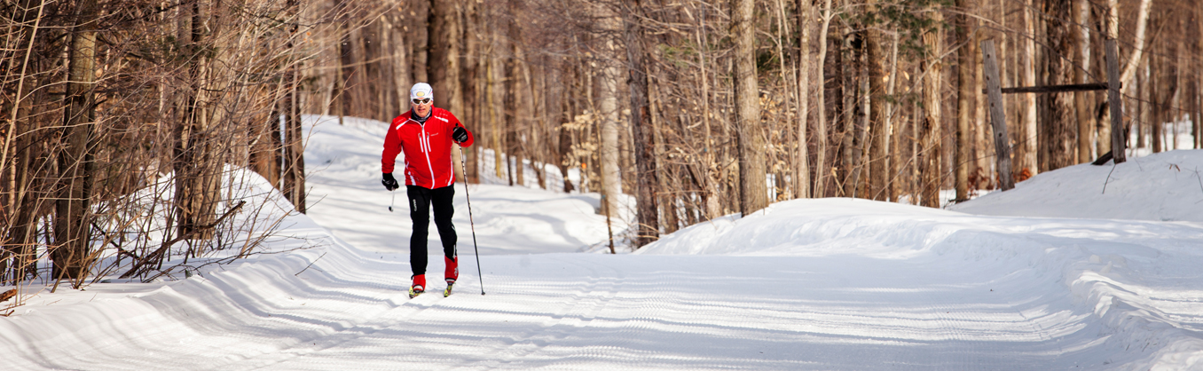 Cross Country Skiing in Barrie