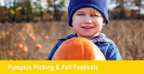 Fall Festivals and Pumpkin Picking