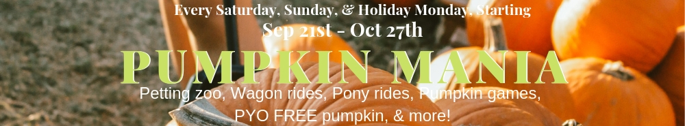 Pumpkin Mania ad featuring pumpkin background with sept 21st to oct 27th dates