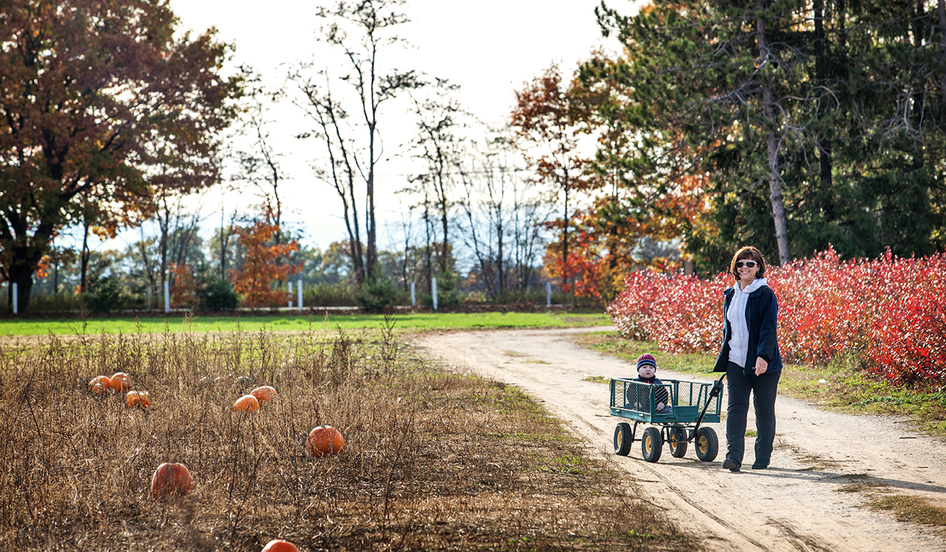 6 Ways to Make the Most of Your Fall in Barrie(blogcover2)