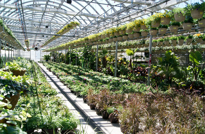 Home and garden barrie for Better homes and gardens greenhouse