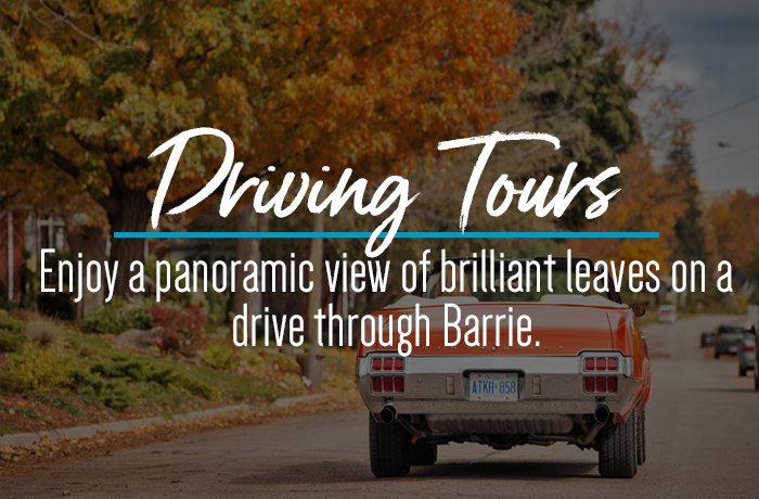 Fall Driving Tours