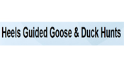 Heels Guided Goose & Duck Hunts