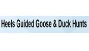 Heels Guided Goose & Duck Hunts