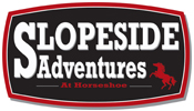 Horseshoe Resort - Slopeside Adventures