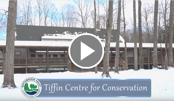 Tiffin Centre for Conservation