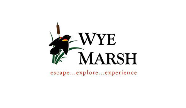 Wye Marsh Wildlife Centre
