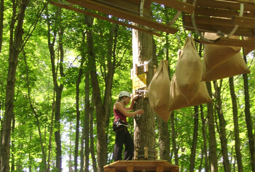 Treetop Trekking at Horseshoe