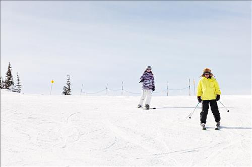 Enjoy skiing in the Barrie area